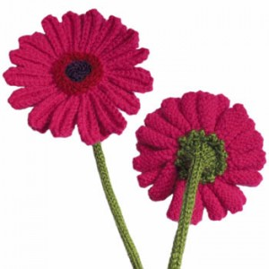 Pictures of Flower Knitting Pattern Tutorial