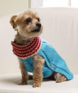 Holiday Dog Sweater Knitting Pattern Images