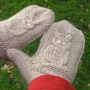 Owl Mitten Knitting Pattern Photos