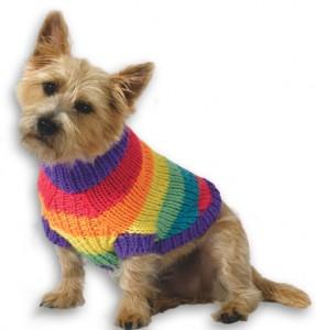 Rainbow Dog Sweater Knitting Pattern Photos