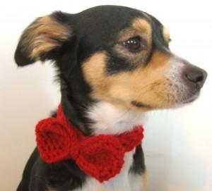 Free Crochet Dog Bow Tie Knitting Pattern