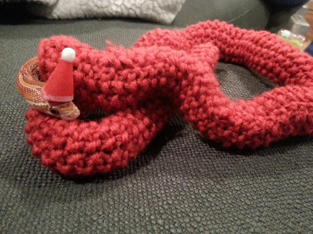 christmas kntting pattern